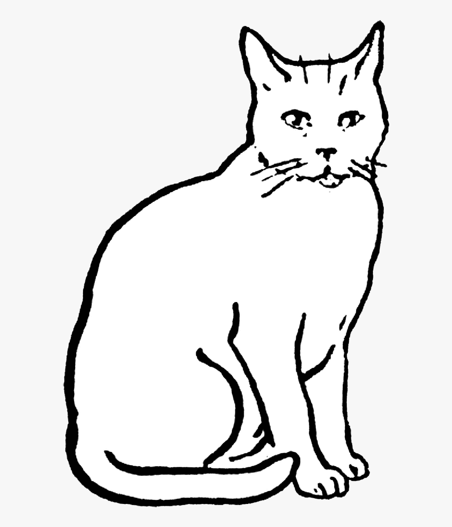 Cat drawing animals images. Cats clipart black and white