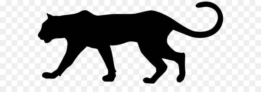 Cats black panther