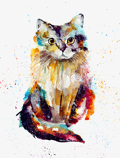 Cat clipart colour. Watercolor kitty png image