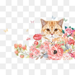 Cat clipart floral. Background png vectors psd