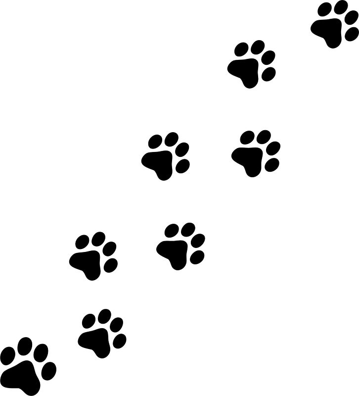 collection of prints. Cat clipart paw print