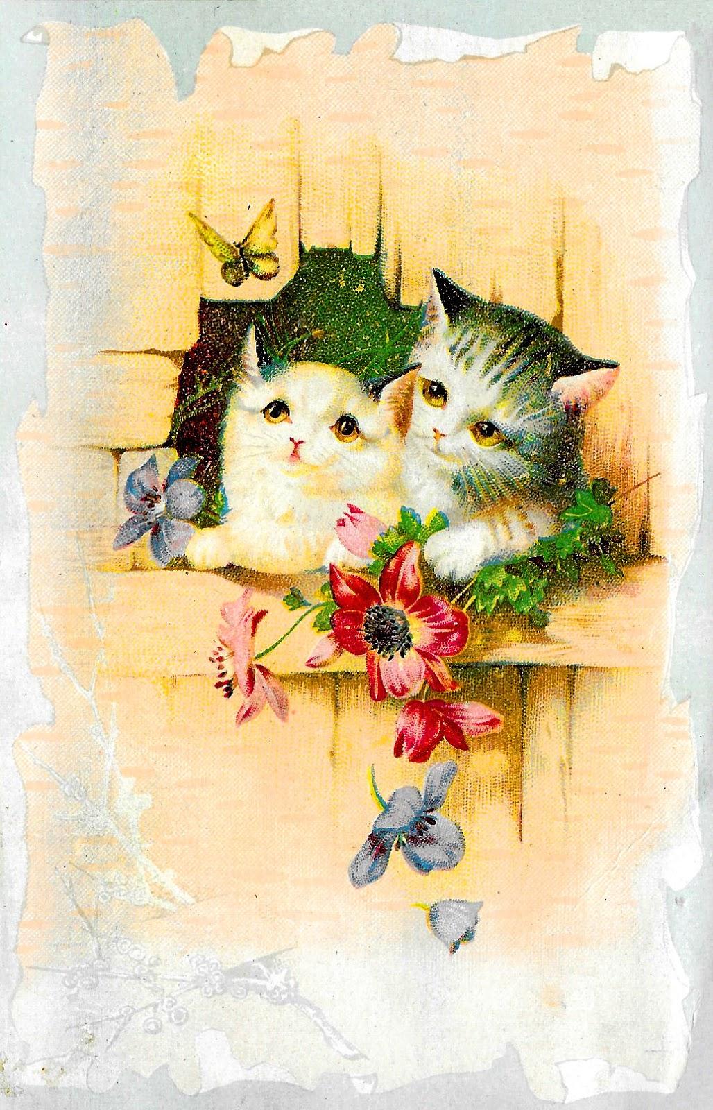 Antique images vintage cards. Cat clipart printable