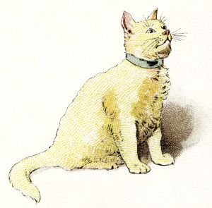 Yellow vintage image kitten. Cat clipart printable
