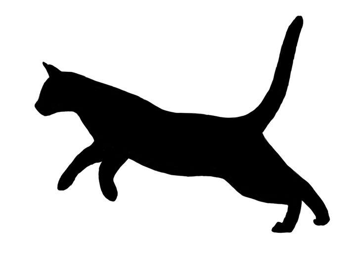 best felines images. Cats clipart run