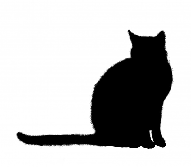 Sitting free stock photo. Silhouette clipart cat