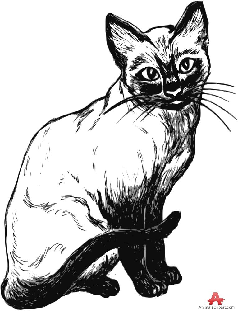 Cat clipart stencil. Siamese free design download