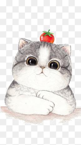 Cat clipart transparent background. Png images download resources