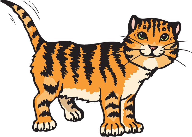 Orange clipart cats. Cat transparent background panda