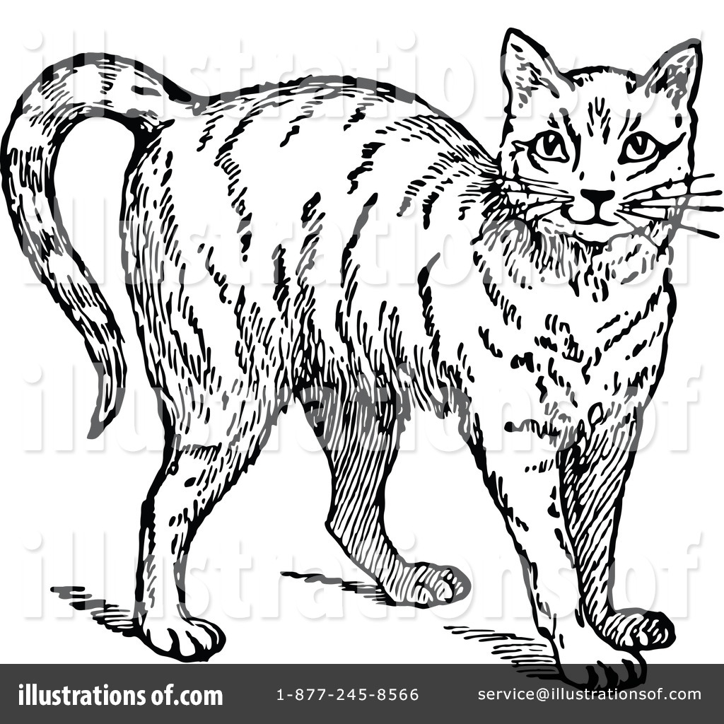 Cat clipart vintage. Illustration by prawny royaltyfree