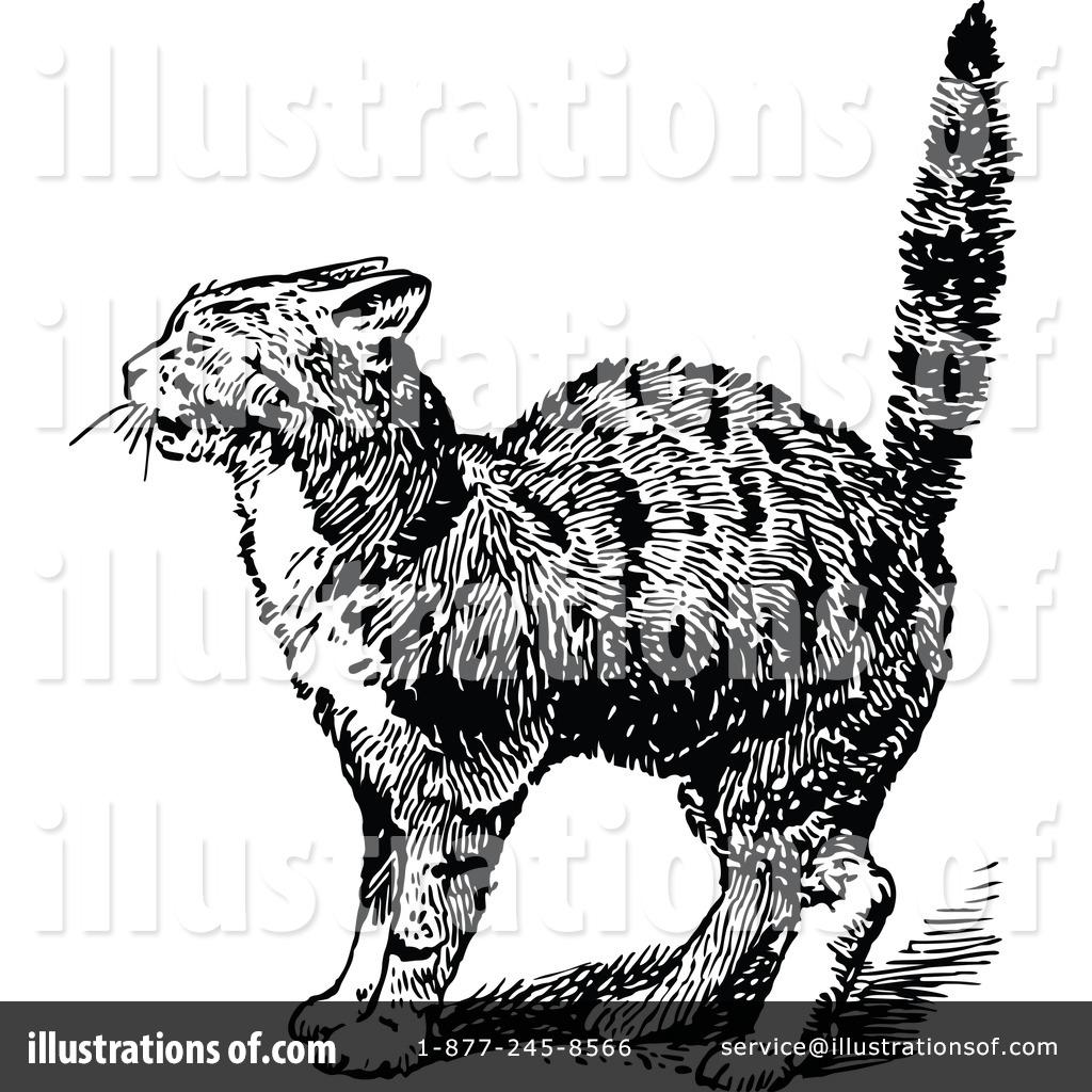 Illustration by prawny royaltyfree. Cat clipart vintage