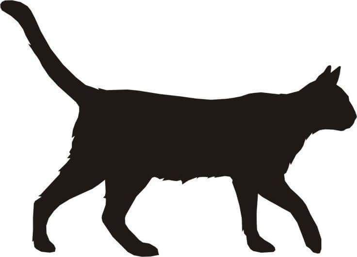 Pin by krisrine on. Cats clipart walking