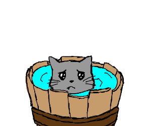 Cat clipart water. Bath time for kitty