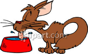 A cartoon drinking from. Cat clipart water