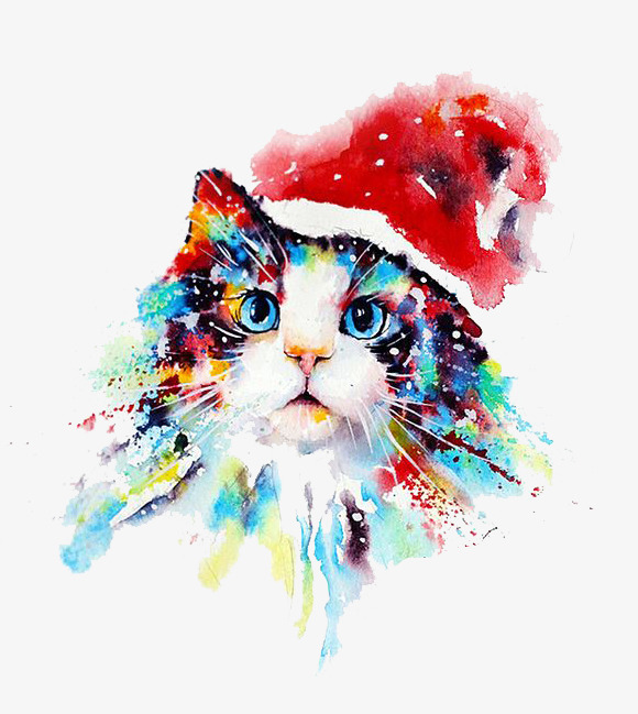 Kitty red hat colour. Cat clipart watercolor
