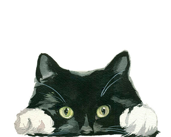 Black and white tuxedo. Clipart cat hand
