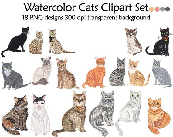 Cat clipart watercolor. Cats set clip art
