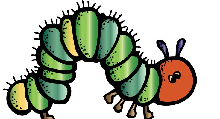 best cute for. Caterpillar clipart class
