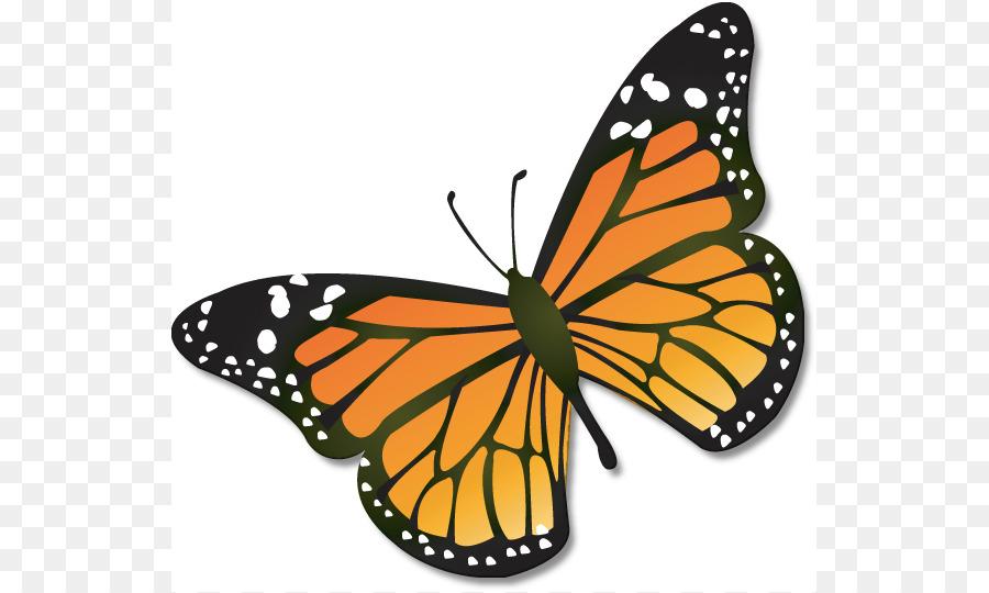 Caterpillar clipart monarch. Butterfly insect clip art
