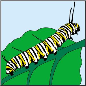 Caterpillar clipart monarch. Clip art butterfly color