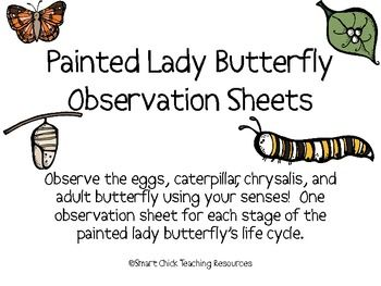 Painted Lady Butterfly coloring page | Free Printable Coloring Pages | 263x350