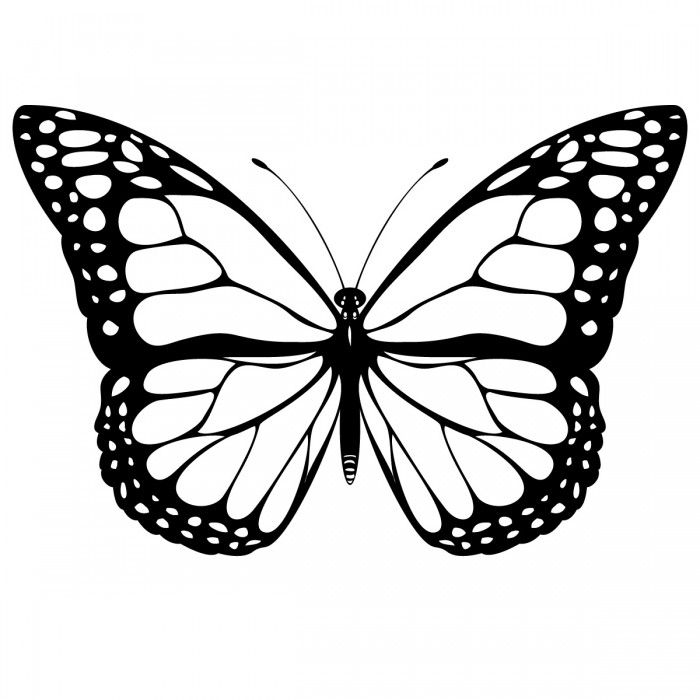 Butterfly coloring pages science. Caterpillar clipart painted lady