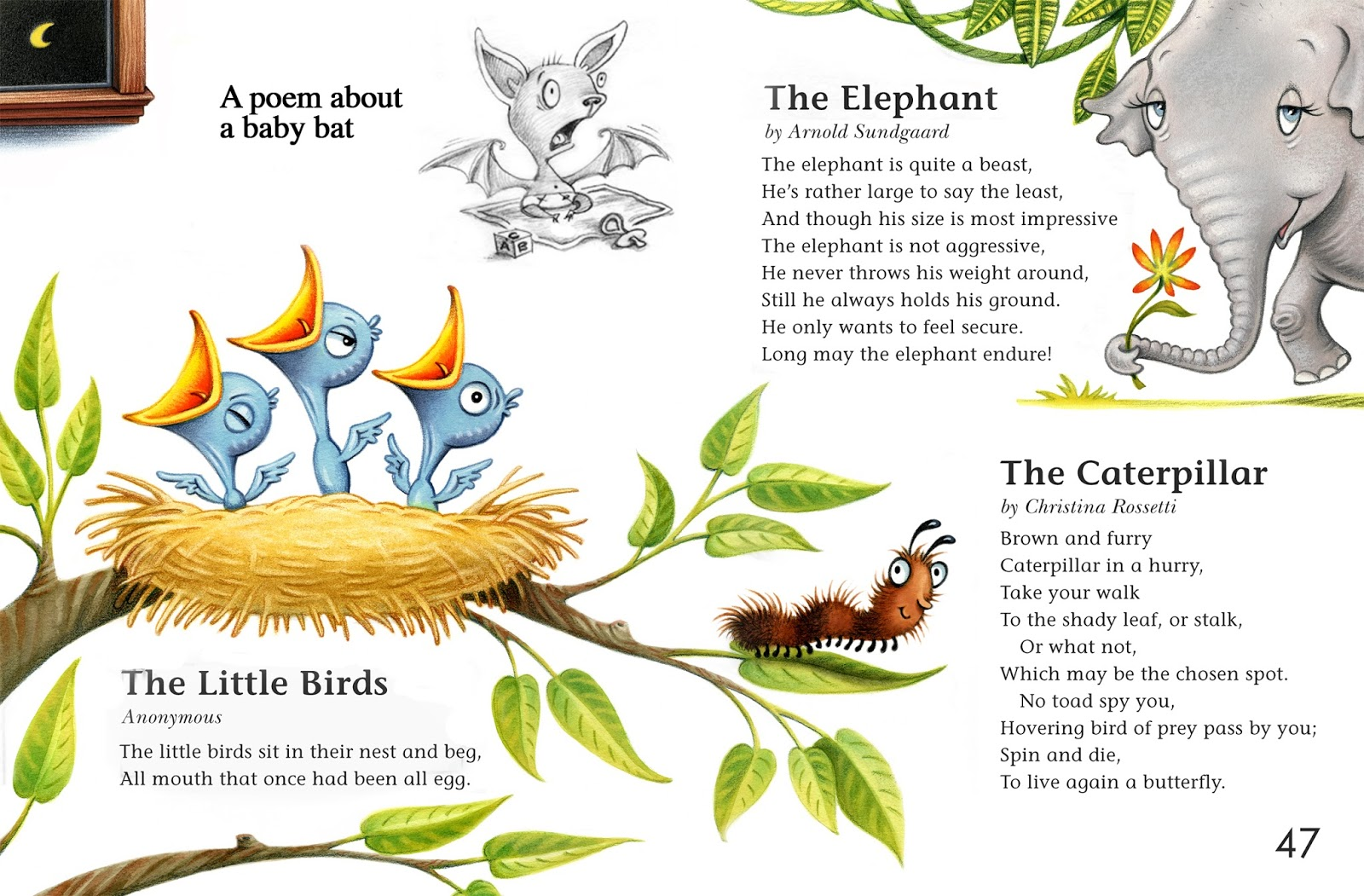 Debbie palen illustration shel. Caterpillar clipart poem