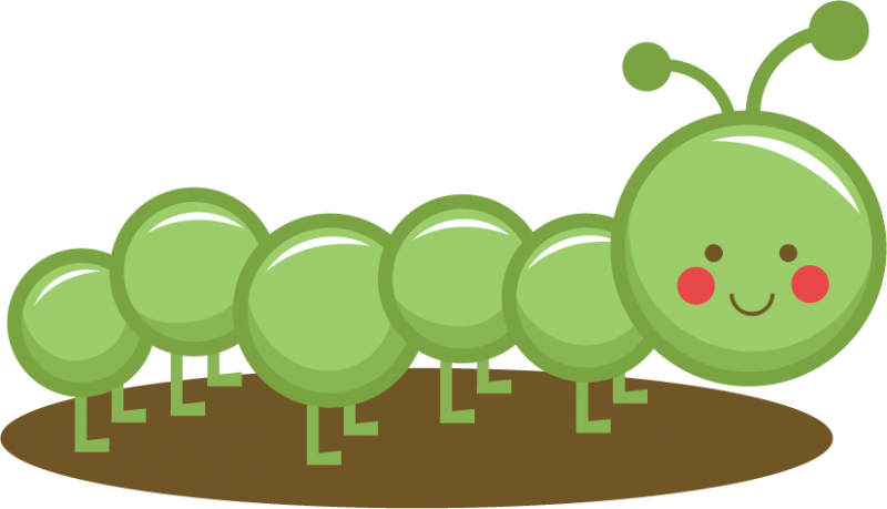 collection of caterpillar. Worm clipart cool
