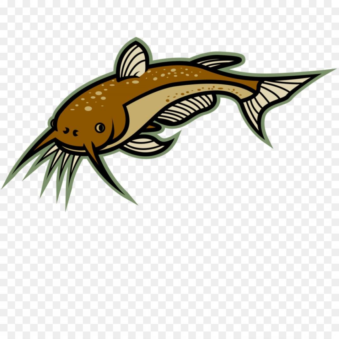 Png clip art cliparts. Catfish clipart