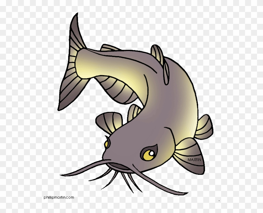Catfish clipart. Channel clip art cartoon