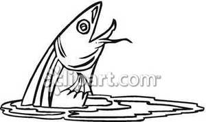 Jumping out of water. Catfish clipart black and white