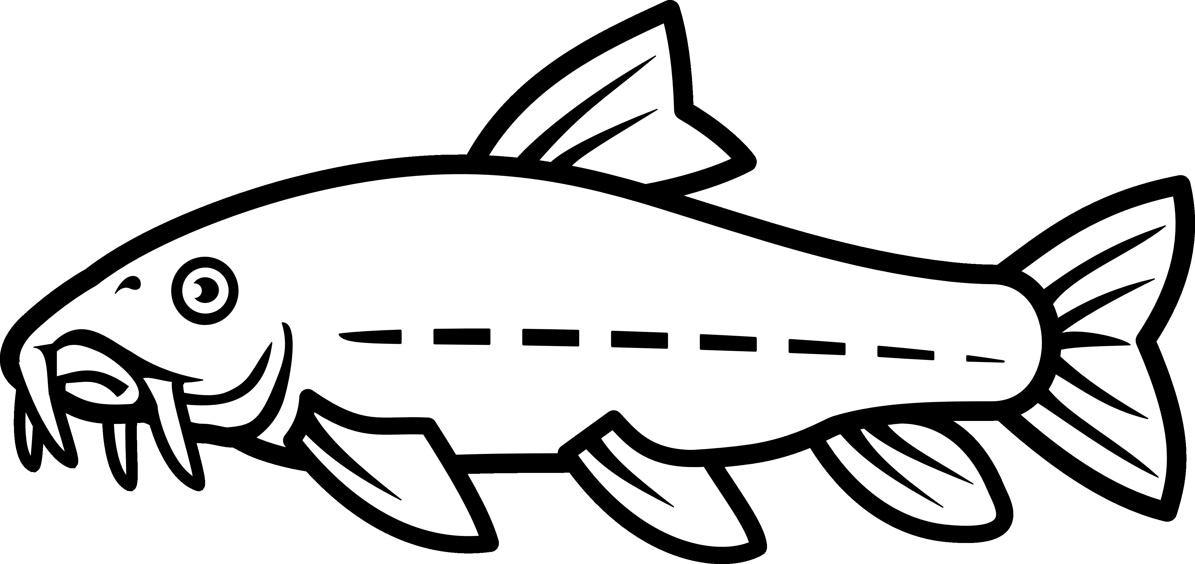 With n clip art. Catfish clipart black and white