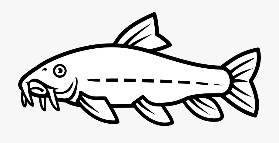Catfish clipart black and white. Hito transparent cartoon free