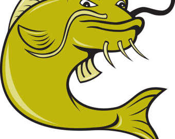 Etsy angry catfishfishgift taggift. Catfish clipart cartoon