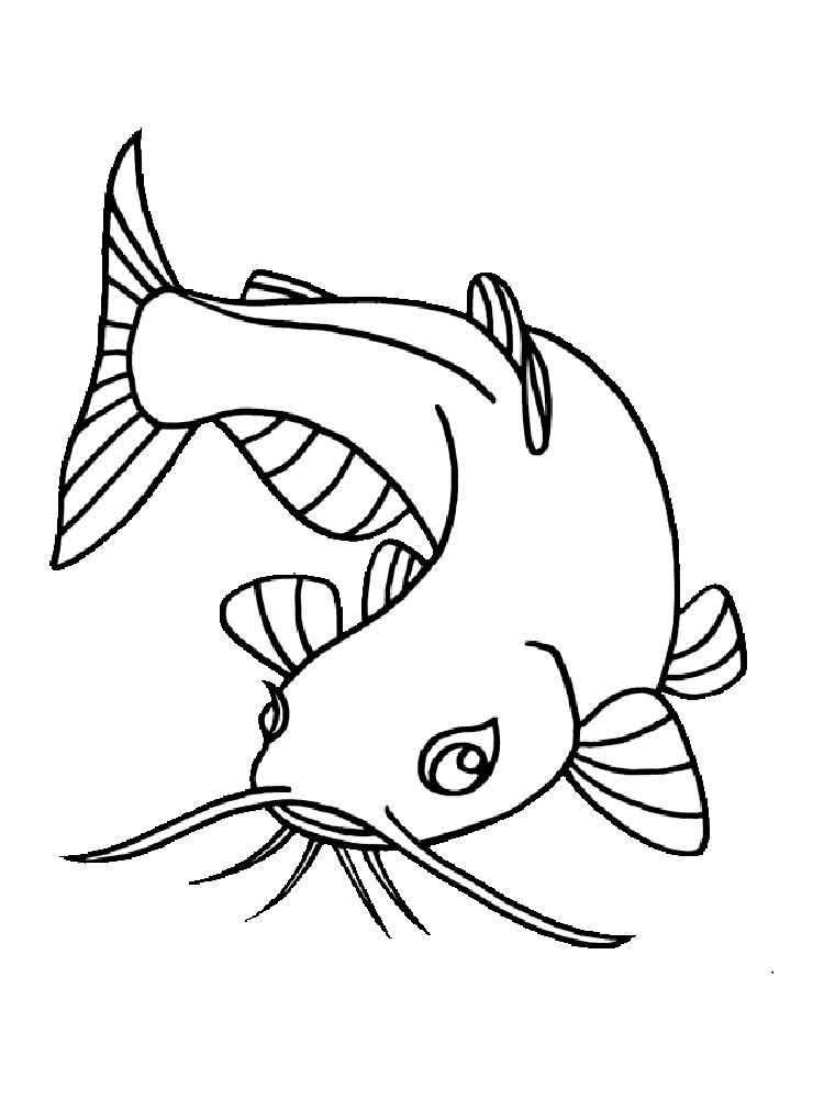 Drawing images at getdrawings. Catfish clipart cartoon