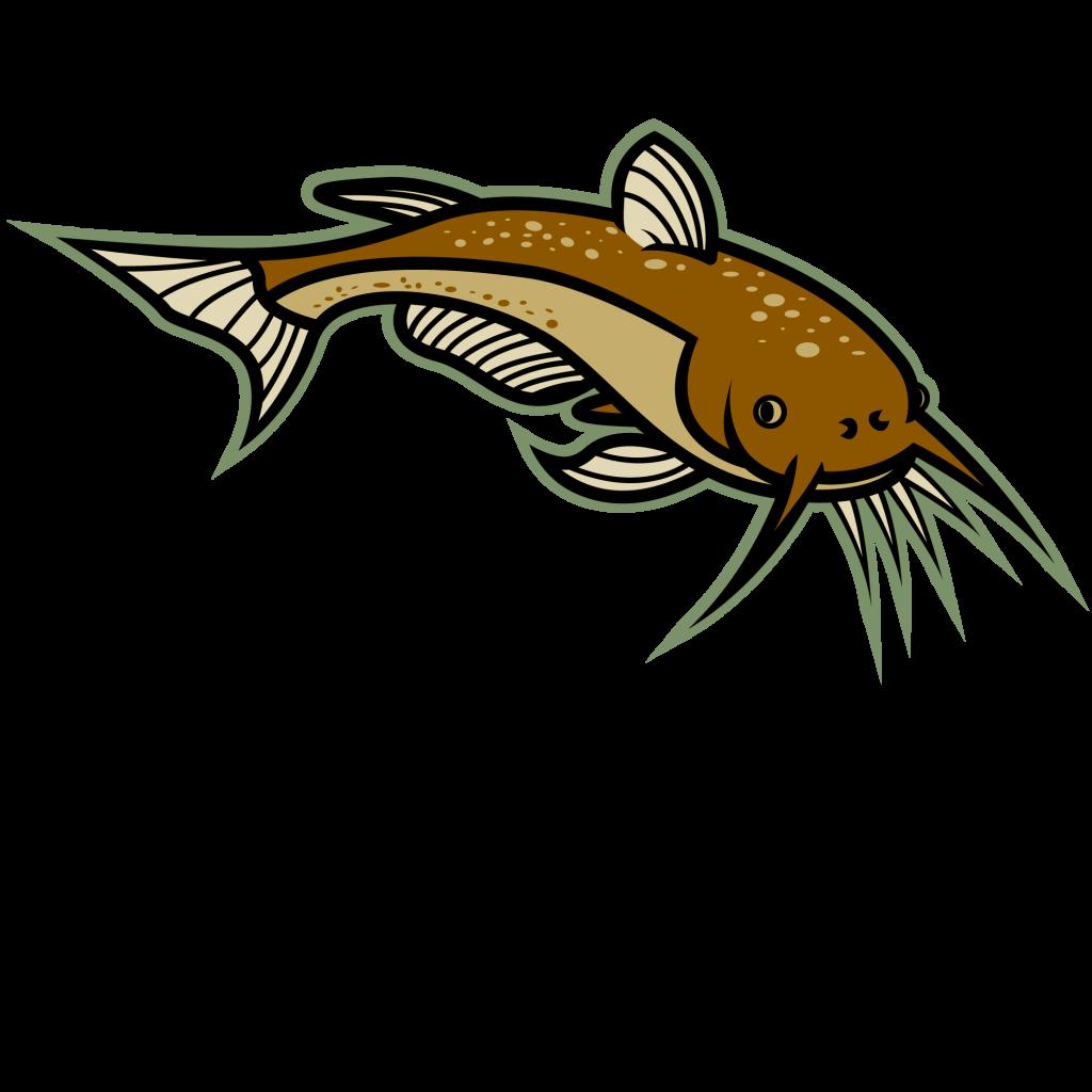 Catfish clipart fried catfish. Image of best clip