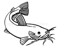 Line drawing at getdrawings. Catfish clipart outline