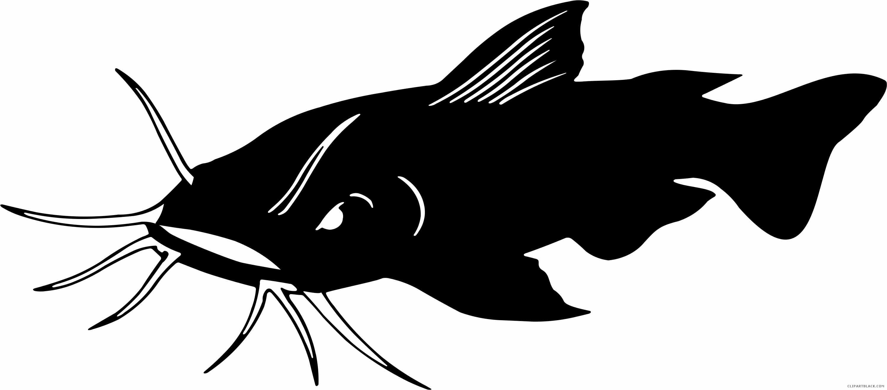 Animal free black white. Catfish clipart outline