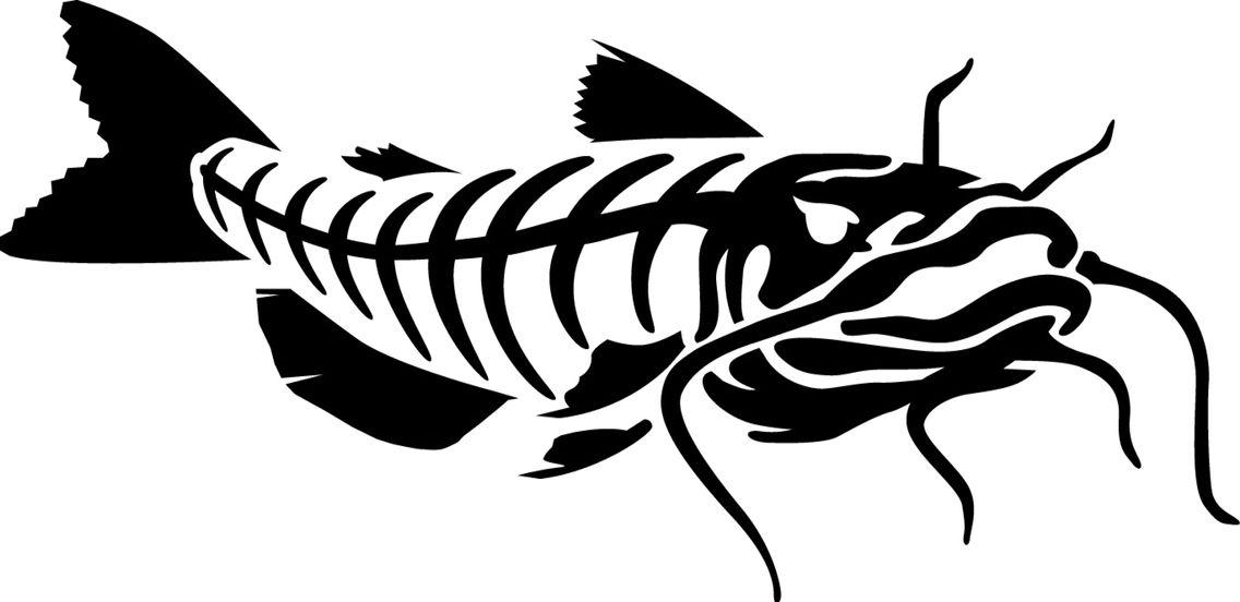 Catfish clipart skeleton. Art for g rods