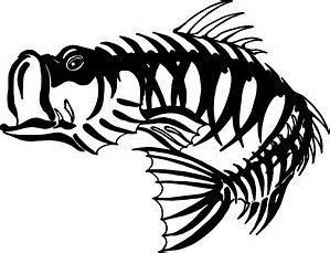 Catfish clipart skeleton. Image result for mean