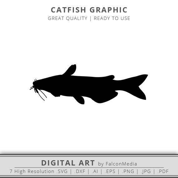 Catfish clipart svg. Freshwater fish fishing clip