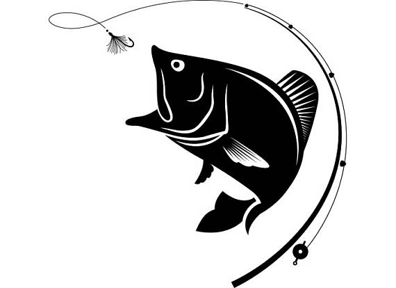 Fly fishing fisherman trout. Catfish clipart svg