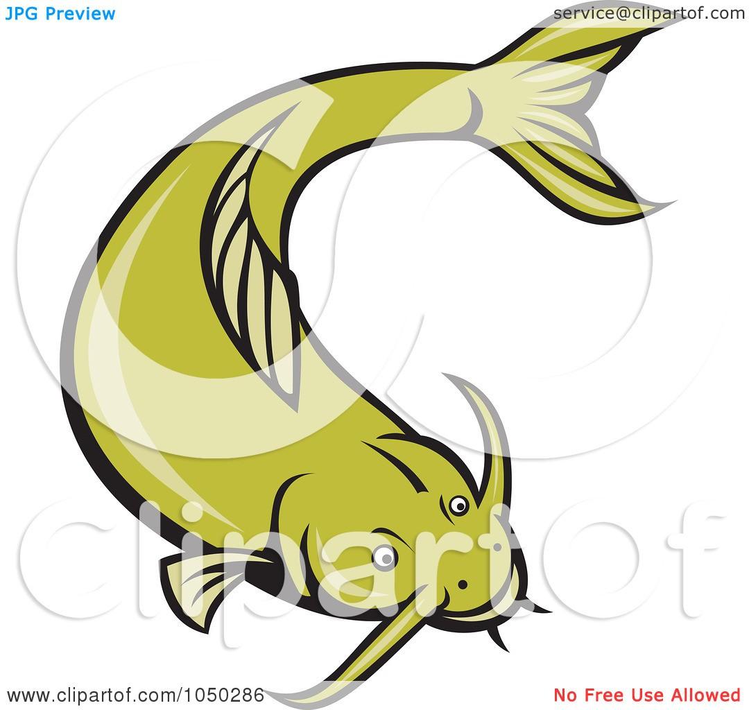 Royalty free panda images. Catfish clipart vector
