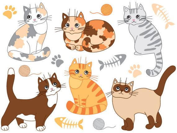 Pin by drew courtney. Cats clipart