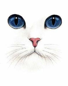 Cats clipart run. Pin by mary mcdaniel