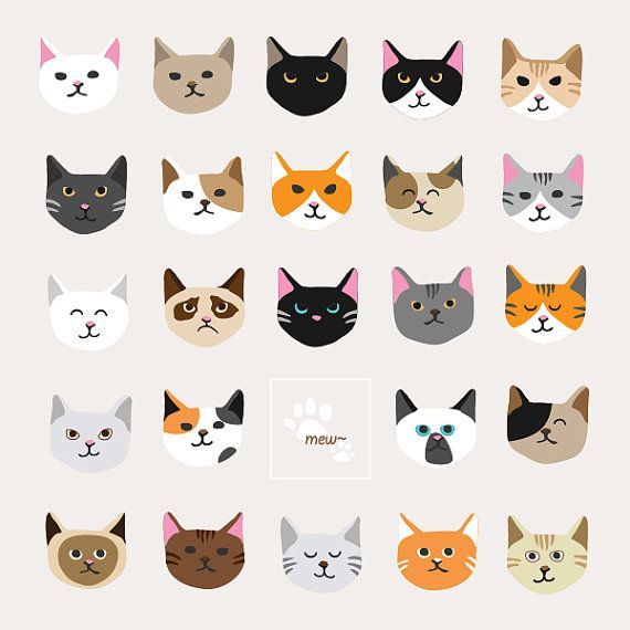 best images on. Cats clipart supply