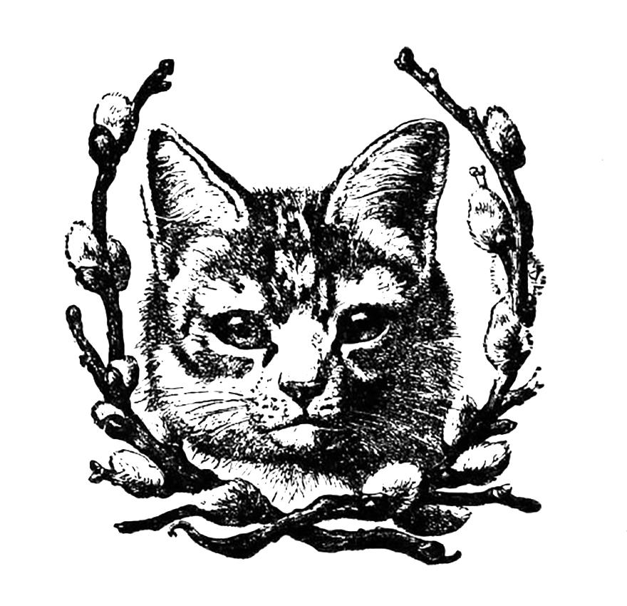 Clip art dromgfd top. Cat clipart vintage