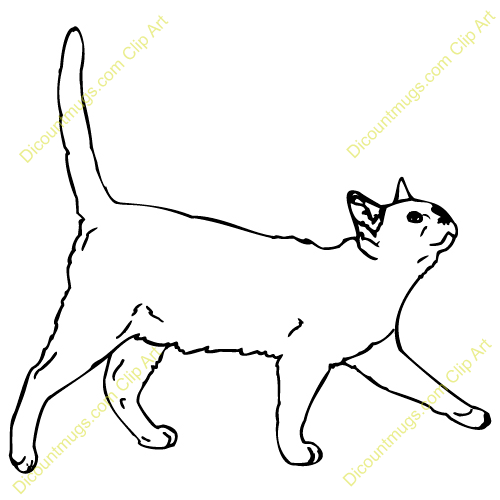 Cats clipart walking. Cat line drawing clip