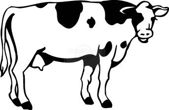Cow clip art free. Cows clipart