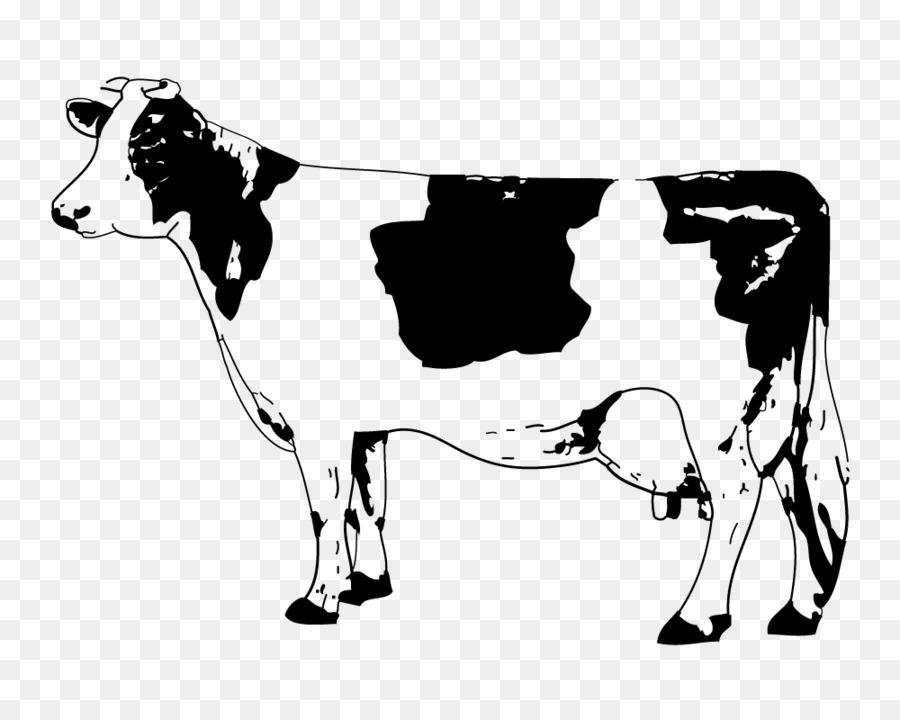 Cattle clipart angus cattle. Calf clip art sketch