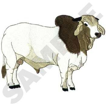Brahman embroidery designs machine. Cattle clipart brahma bull